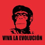 De ce ajung in frunte cei mai rai – varianta evolutionista
