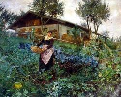 Grădina ca soluție politică